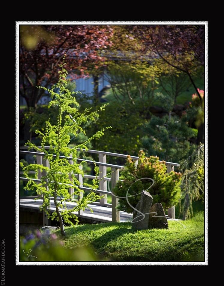 Japanese Gardens, Mayne Island, BC Canada