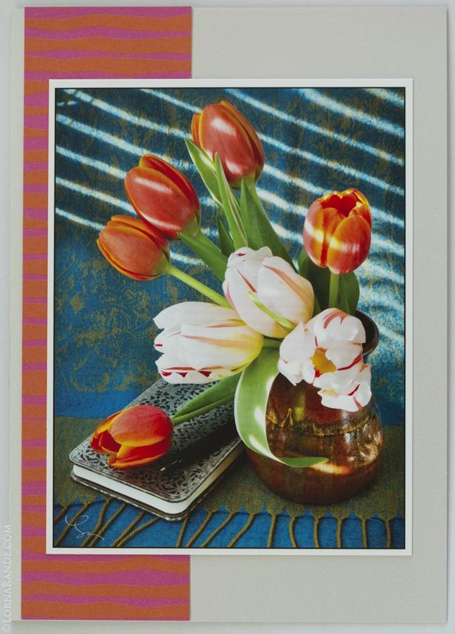 'Tulips' Chilliwack, BC