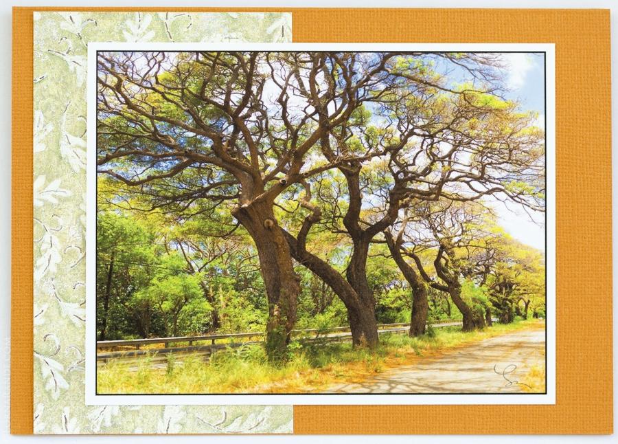 'Road to Lanai' Maui, HI