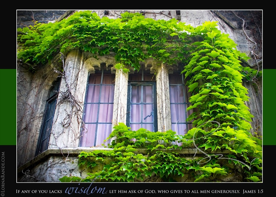 'Ivy Window' 'Selected for Exhibition' - PPOC-BC 2007 -Toronto, ON Canada