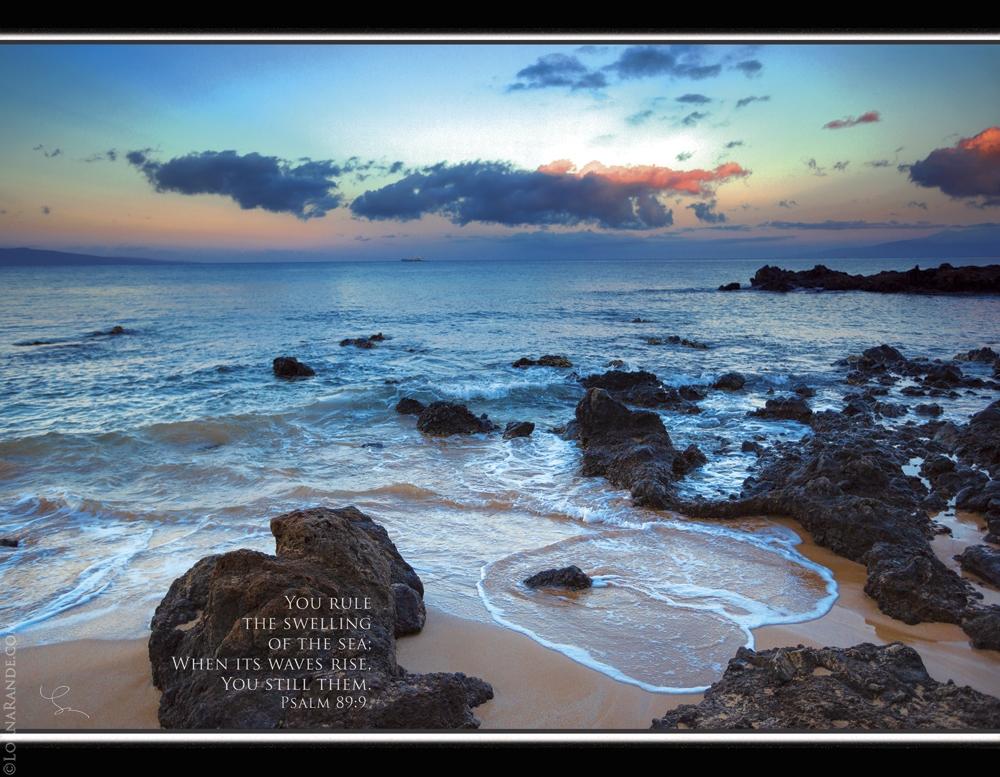 "12 month 8.5""x11"" Calendar of Maui images"