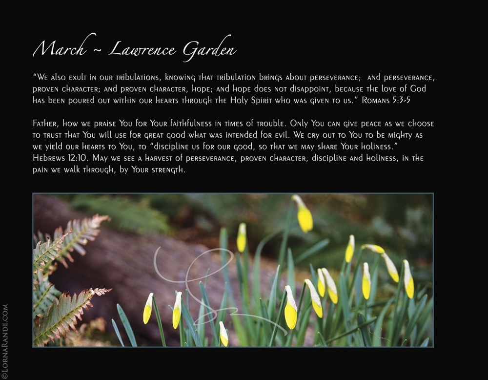 March - Lawrence Garden, Bowen Island, BC